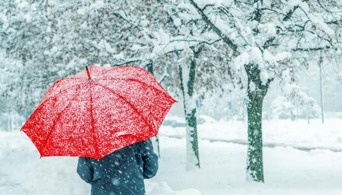Dream Of Snow