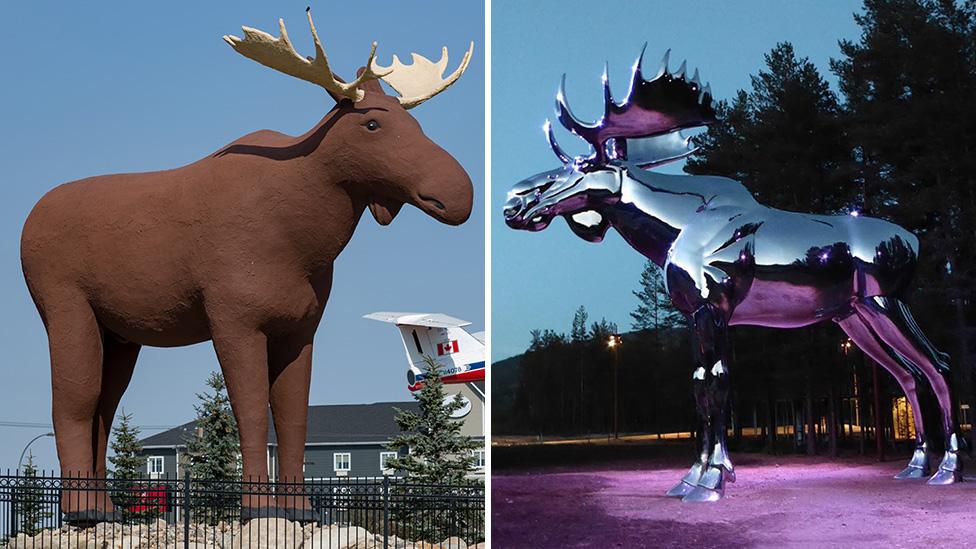 moose-and-elk: Spirit Animal, Totem, Symbolism and Meaning